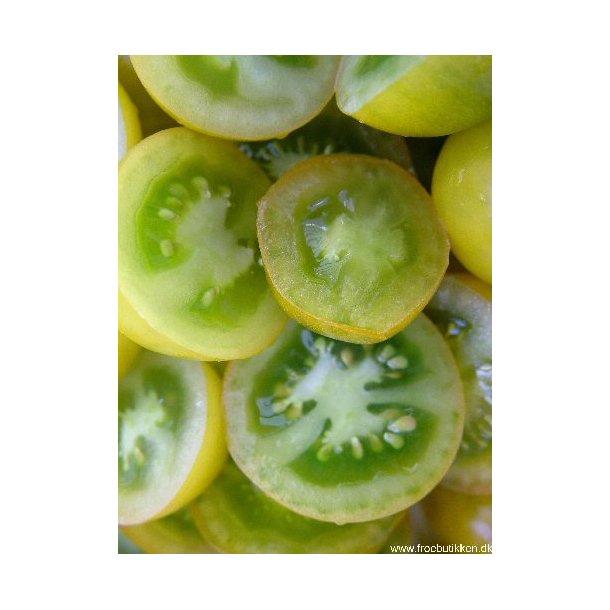 Tomat Green grape. Frø.